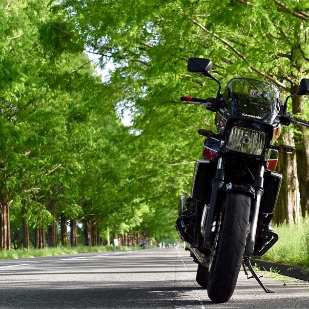 """画像1: gravity of kawasaki on Instagram: """"シャープな見た目とさまざまな条件において優れた走行性能を持っているカワサキ ZRX1200 DAEG。 春夏秋冬で表情を変えるメタセコイアの並木道を、爽快に走り抜けることが出来そうですね✨ ・ こちらの素敵なお写真を撮影された @yutaka1414…"""" www.instagram.com"""