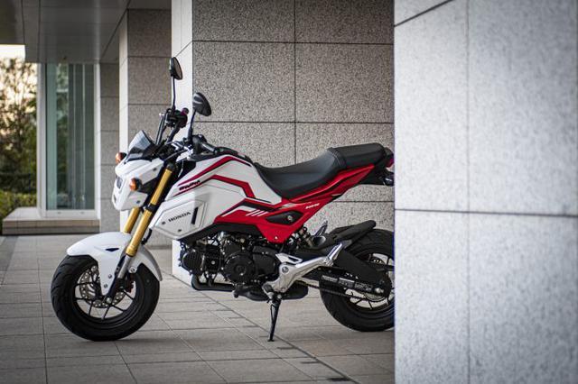画像3: グロム(GROM)のディメンションは大型バイクをそのまま『小さくした』みたい?