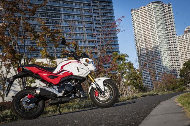 画像1: グロム(GROM)のディメンションは大型バイクをそのまま『小さくした』みたい?