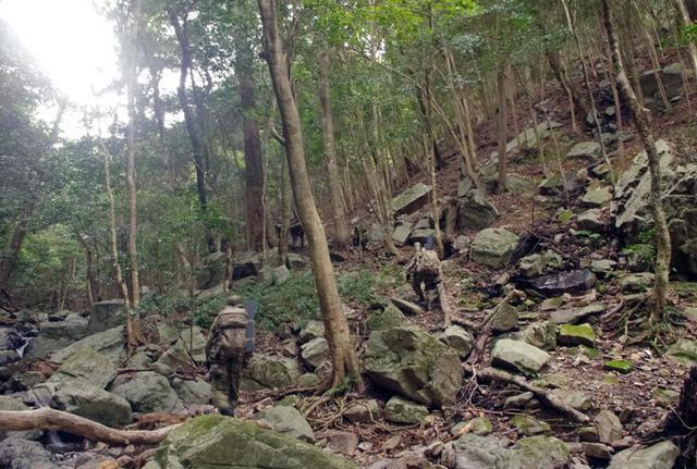 画像7: 通信・衛生・狙撃の訓練検閲|陸自対馬警備隊