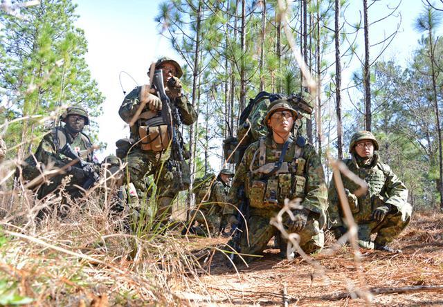 画像1: 精鋭196人、米国で共同訓練|弘前駐屯地