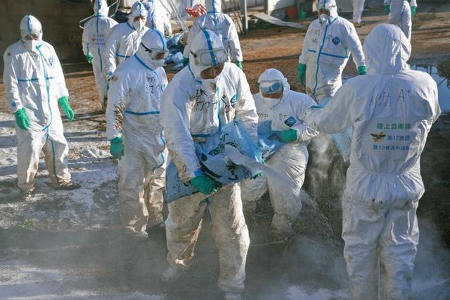 画像1: 長野県 豚コレラに災派|松本駐屯地