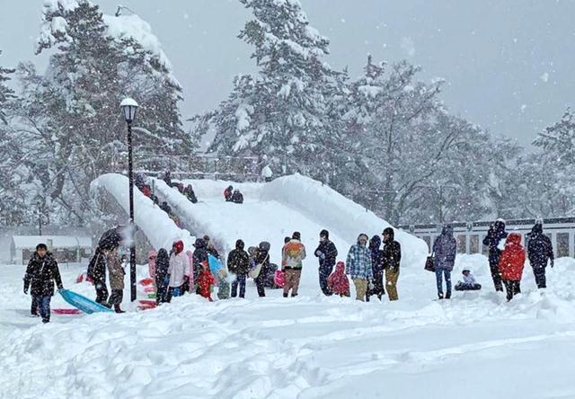 画像3: 「雪燈籠まつり」隊員65人が雪像制作|弘前駐屯地