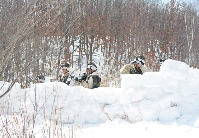 画像9: 積雪寒冷地での戦闘力 72戦闘団訓練検閲|陸自7師団