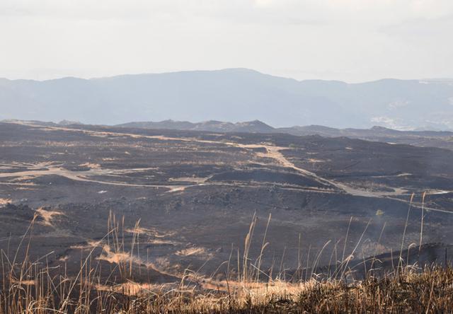 画像9: 霧島演習場 野焼き支援|都城駐屯地