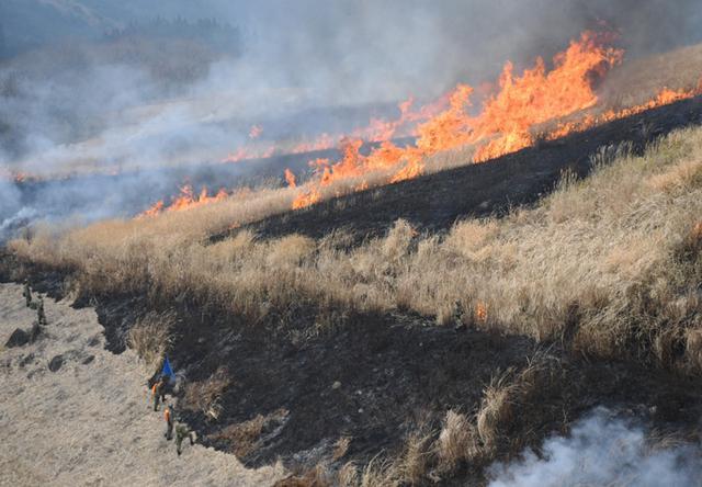 画像5: 霧島演習場 野焼き支援|都城駐屯地