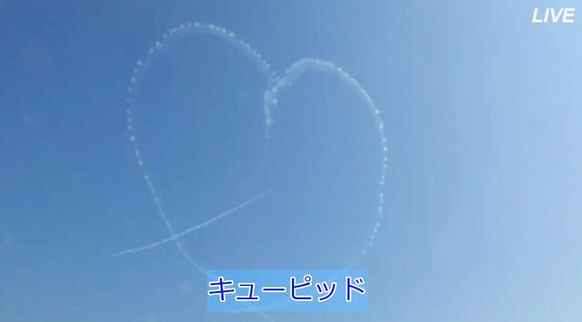 画像5: ブルーインパルス、訓練飛行を初ライブ配信|航空自衛隊