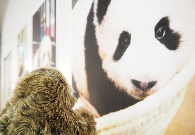 画像4: 【ぐみさんの地本探訪記】第2回 東京地本・台東出張所編