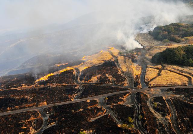 画像1: 訓練環境の維持向上 43普連が霧島演習場を野焼き|都城駐屯地