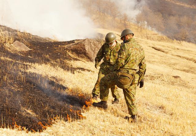 画像4: 訓練環境の維持向上 43普連が霧島演習場を野焼き|都城駐屯地