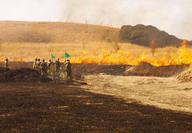 画像3: 訓練環境の維持向上 43普連が霧島演習場を野焼き|都城駐屯地
