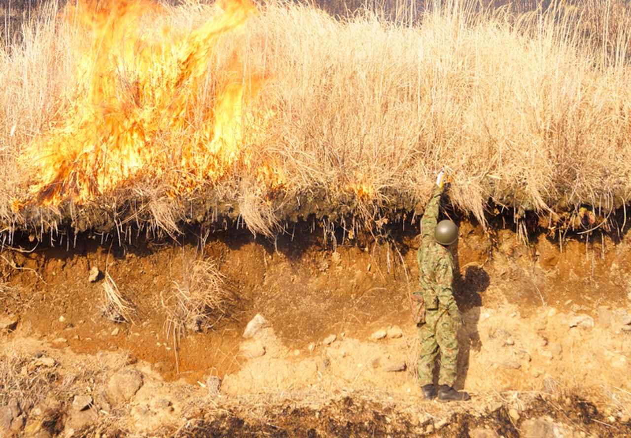 画像2: 訓練環境の維持向上 43普連が霧島演習場を野焼き|都城駐屯地