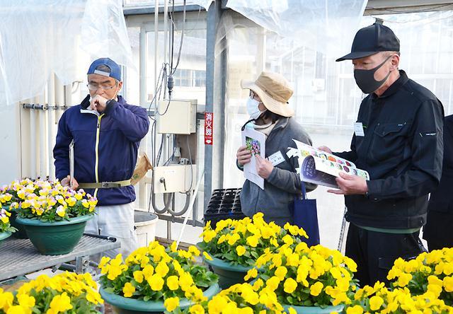 画像3: 就農インターンシップ 定年退職予定者が職業体験|山口地本