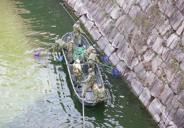 画像4: レンジャー隊員が大阪城で訓練 美化にも貢献 |伊丹駐屯地