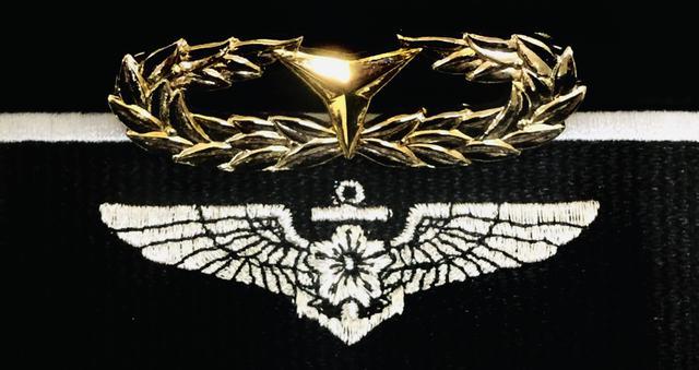 画像: 蒼さんは所属当時は数々の徽章を得るなど、優秀な成績を収めていたそう。写真は体力徽章(ゴールド)と航空徽章(ウイングバッジ)