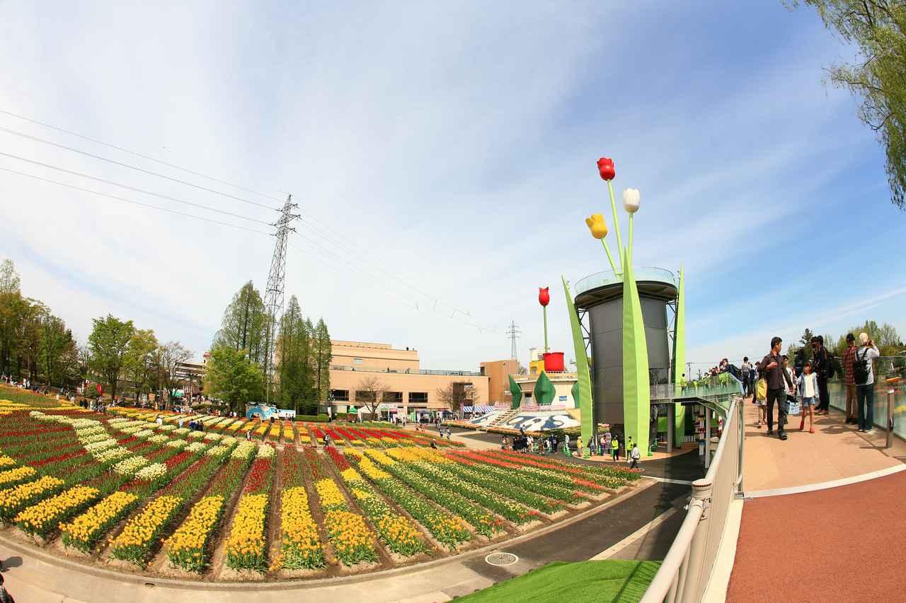 画像: メイン会場には新旧タワーの前に第70回を意味する70の文字がチューリップで表現された。(写真:ブルーインパルスファンネット)
