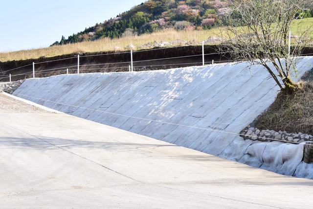 画像: コンクリートキャンバスを使用した斜面の保護(整備後)
