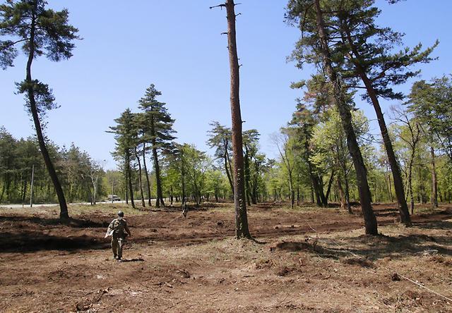画像22: 春季演習場整備に36普連 訓練施設の機能を回復|伊丹駐屯地