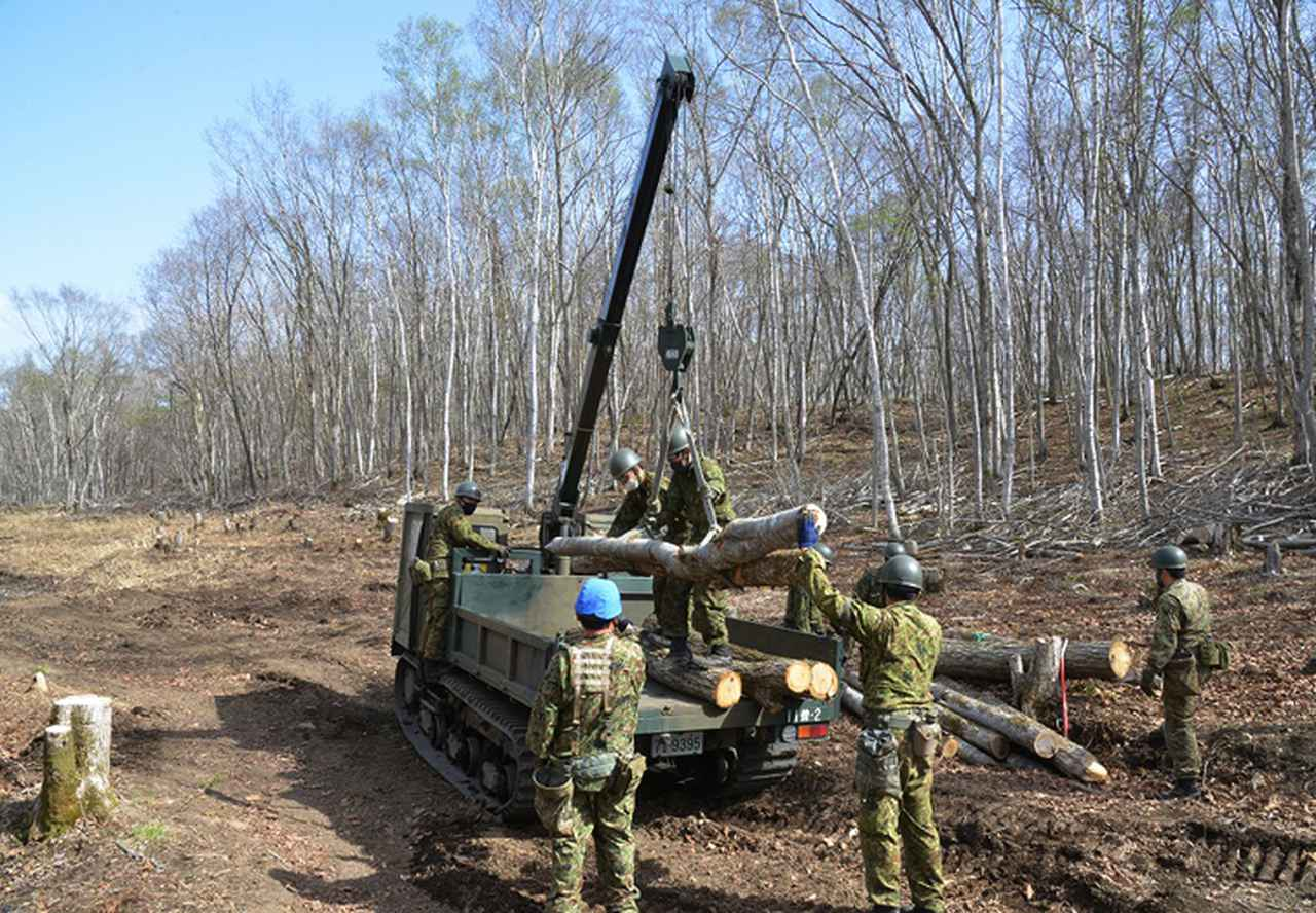 画像: 伐採した木材の積載