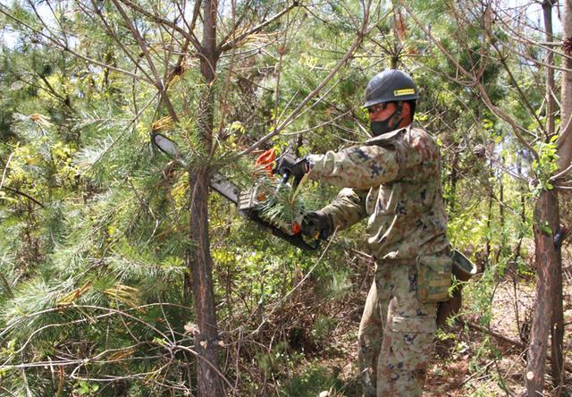 画像7: 春季演習場整備に36普連 訓練施設の機能を回復|伊丹駐屯地