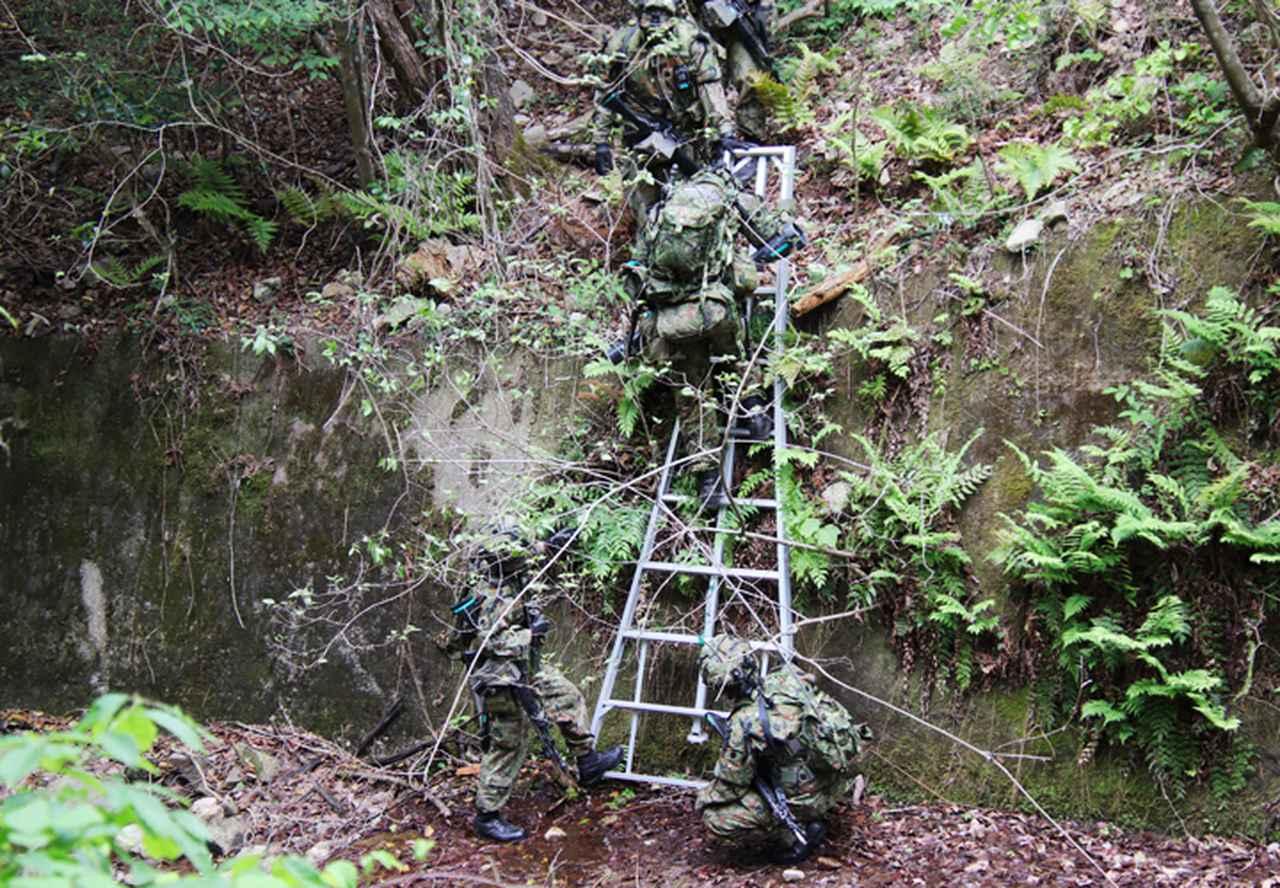 画像: 脚立を使用し深い谷を降りていく隊員