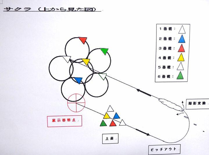 画像: 図3:「サクラ」の描き方(上から見た図)