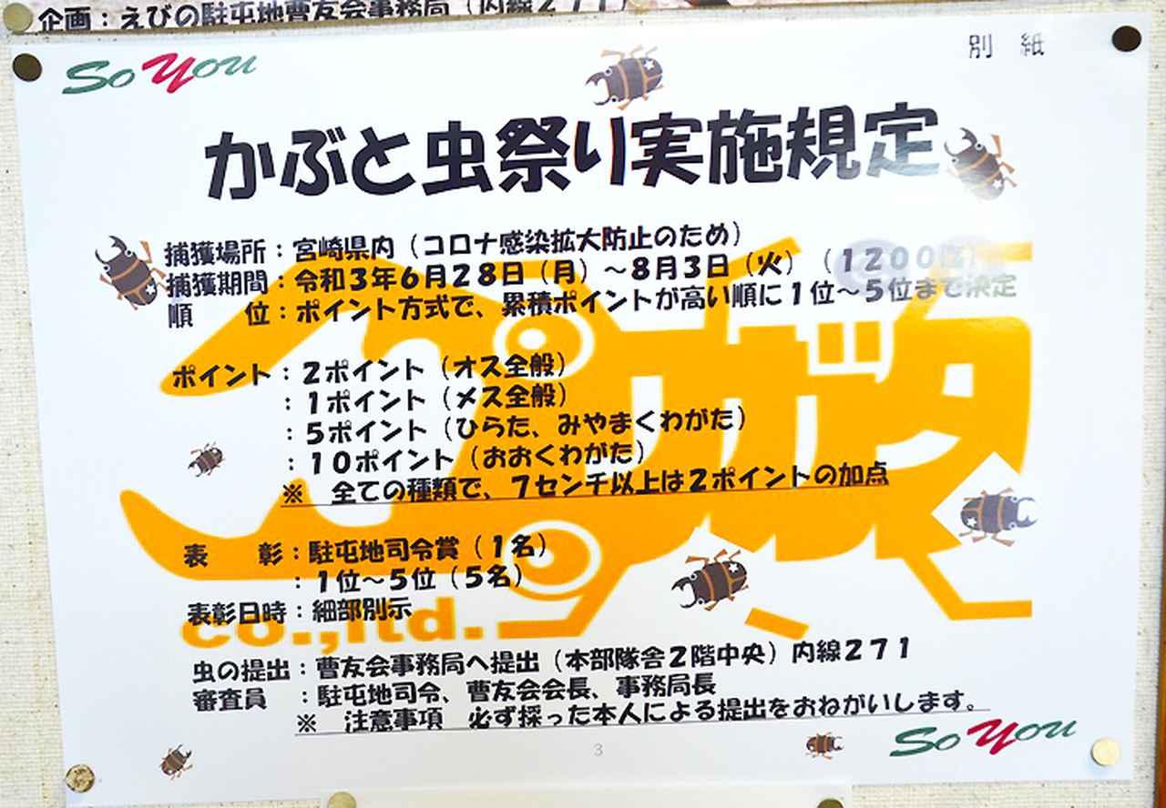 画像: かぶと虫祭り実施規定ポスター