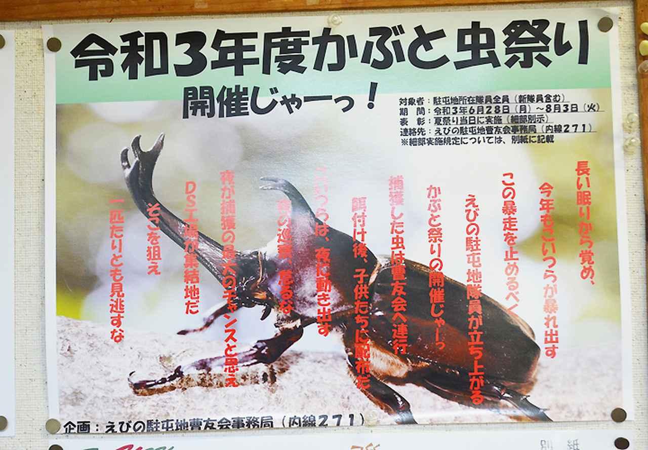 画像: かぶと虫祭りポスター