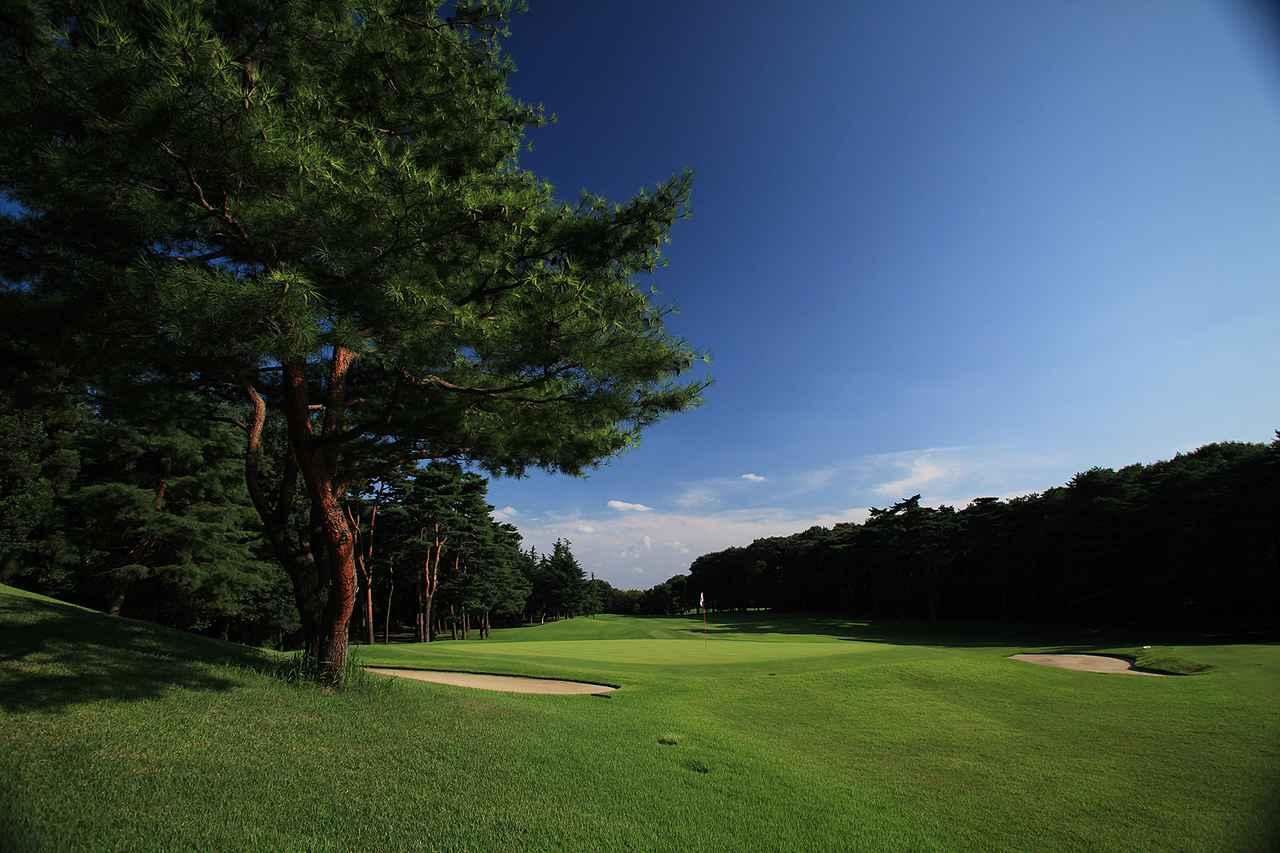 Images : 2番目の画像 - 狭山ゴルフ・クラブ - SRIXON cup ゴルフダイジェスト 全日本ダブルスゴルフ選手権