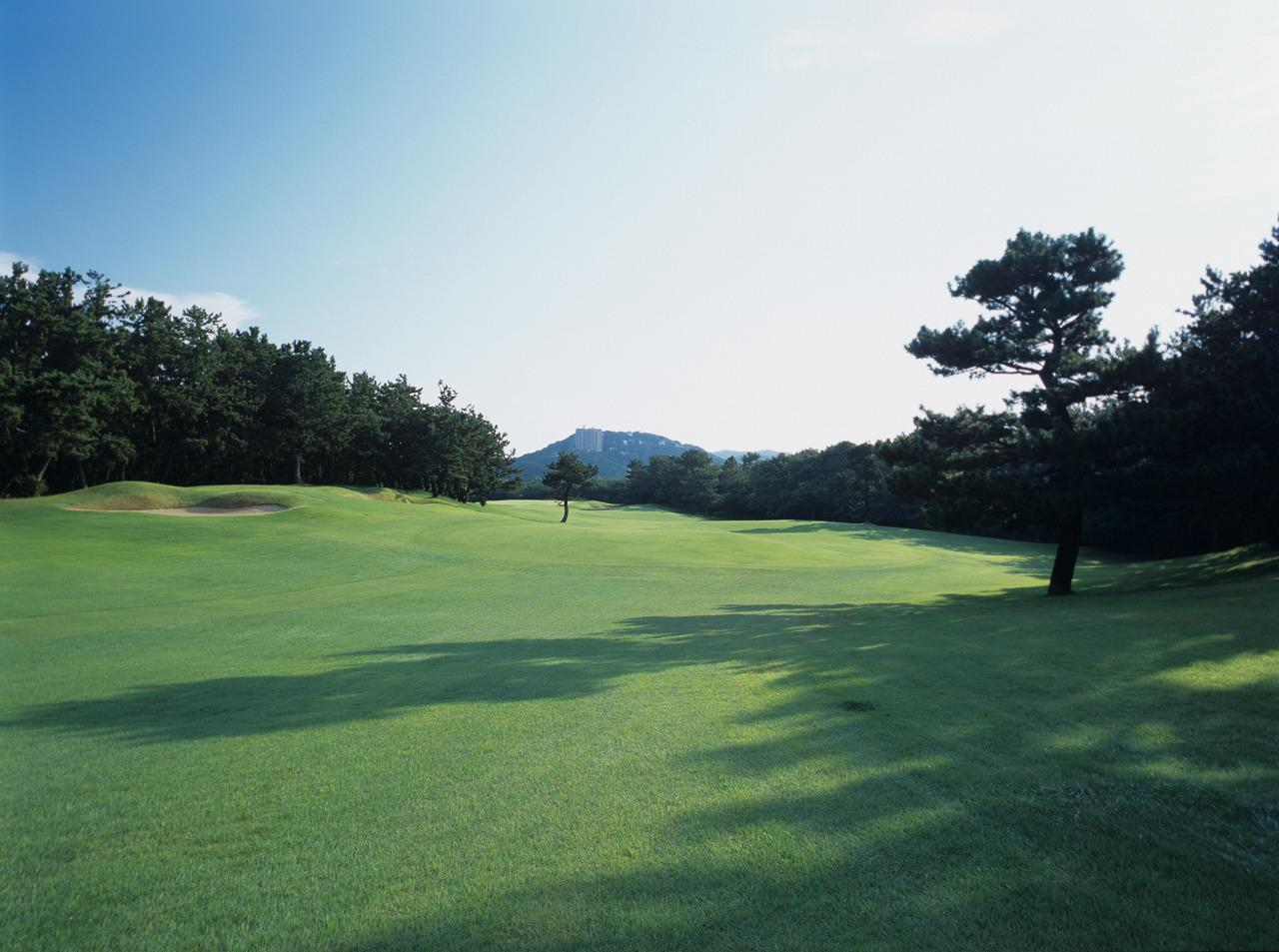 Images : 4番目の画像 - 「全日本決勝 11/2(月) 芥屋ゴルフ倶楽部」のアルバム - SRIXON cup ゴルフダイジェスト 全日本ダブルスゴルフ選手権