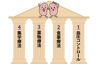 画像: 腎臓病保存療法の「4つの柱」