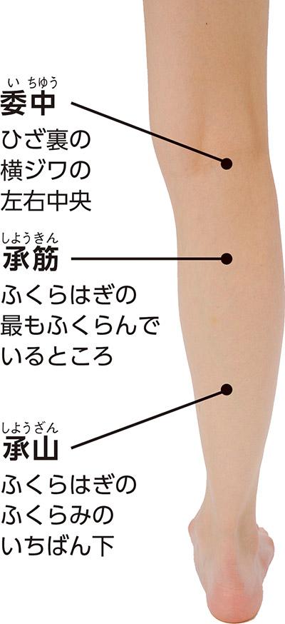 画像1: 【こむら返りに効くツボ】筋肉を緩めて痛みをすぐ鎮める特効穴 お風呂上りの刺激で再発も防ぐ