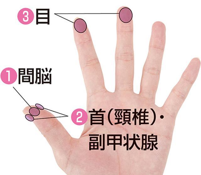 画像1: 眼瞼下垂に効く手のひらの押し方