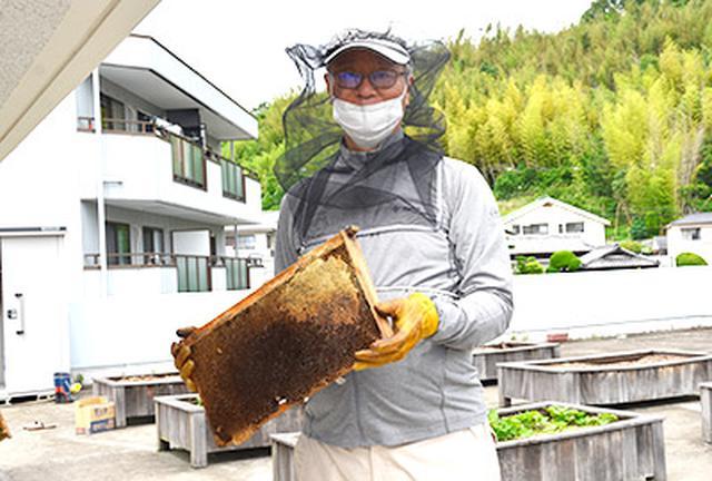 画像: 巣箱の前に立つ採蜜中の藤井先生