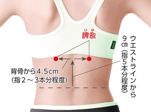 画像2: 胃腸の機能を調整して冷えに特効