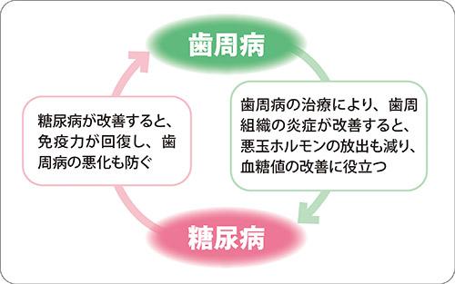 画像: 歯周病の治療でよい循環を作りだそう