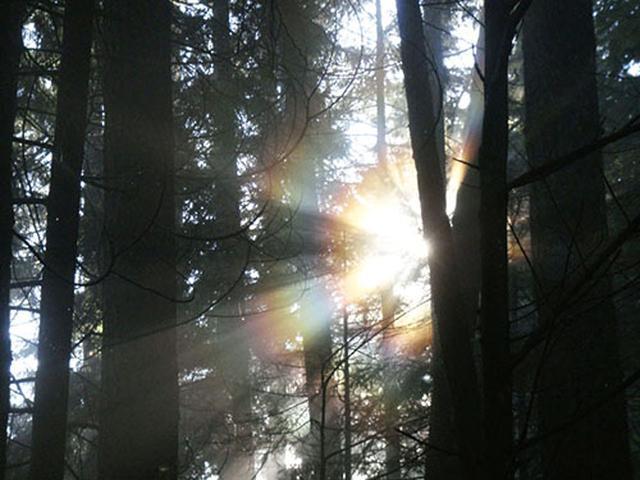 画像: 一瞬で気持ちが落ち着く、 魔法の呼吸法