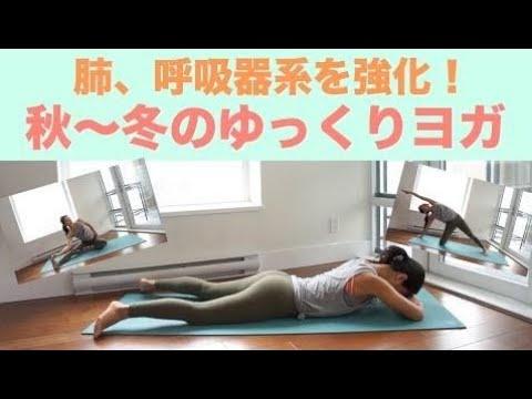 画像: 【肺・呼吸器系を強化】秋〜冬のゆっくり15分ヨガ youtu.be