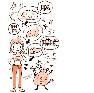 画像: 肥満や生活習慣病を改善するGLP-1