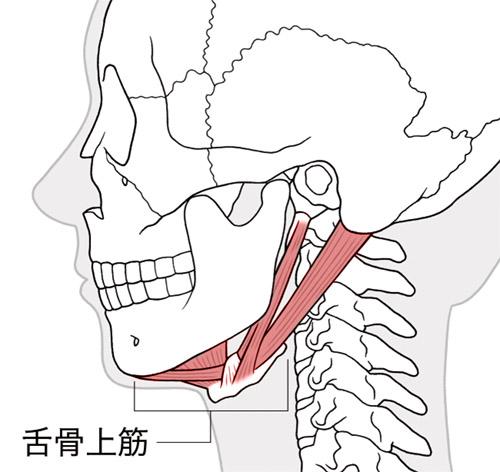 画像: 口を開けてあごを鍛えれば飲み込む力がつく