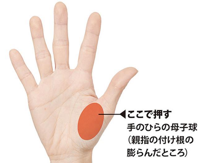画像: 頭蓋骨押しのやり方