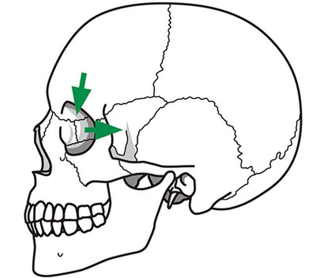 画像3: 【目の血流をよくする】眼球への圧迫を軽減し毛細血管の血行を改善する「頭蓋骨押し」のやり方