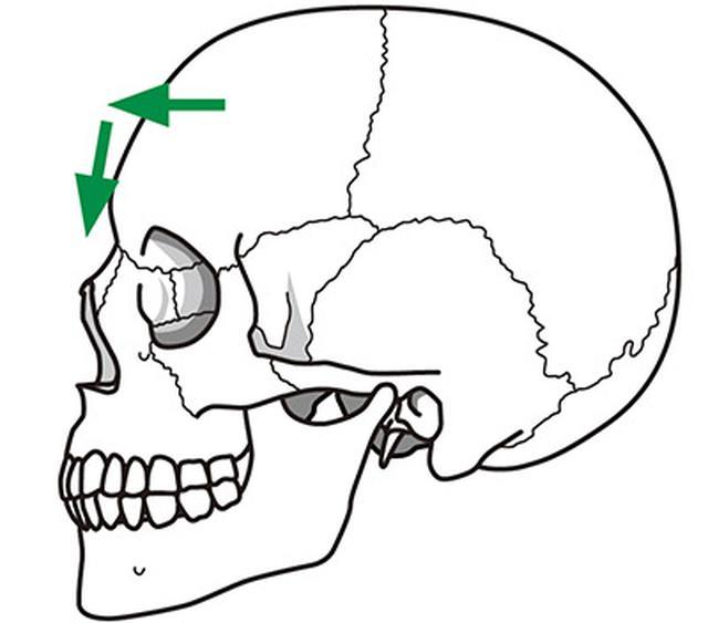 画像1: 【目の血流をよくする】眼球への圧迫を軽減し毛細血管の血行を改善する「頭蓋骨押し」のやり方