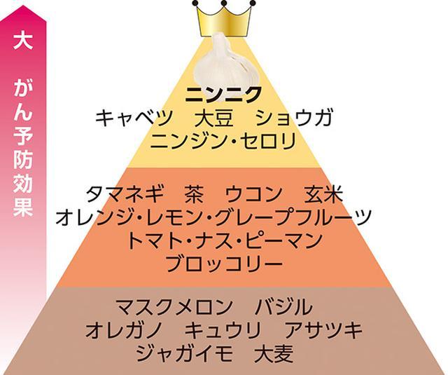 画像: アメリカ国立がん研究所発表「デザイナーフーズピラミッド」(一部抜粋)
