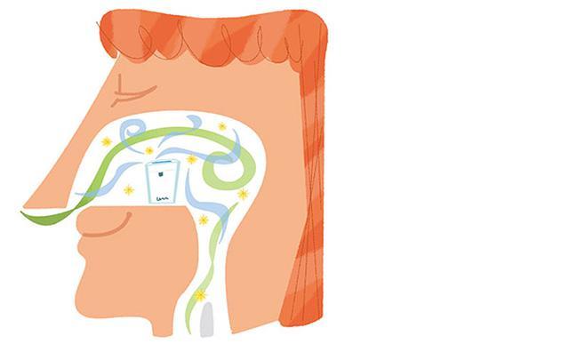 画像: 鼻は加湿機能のついている空気清浄機!