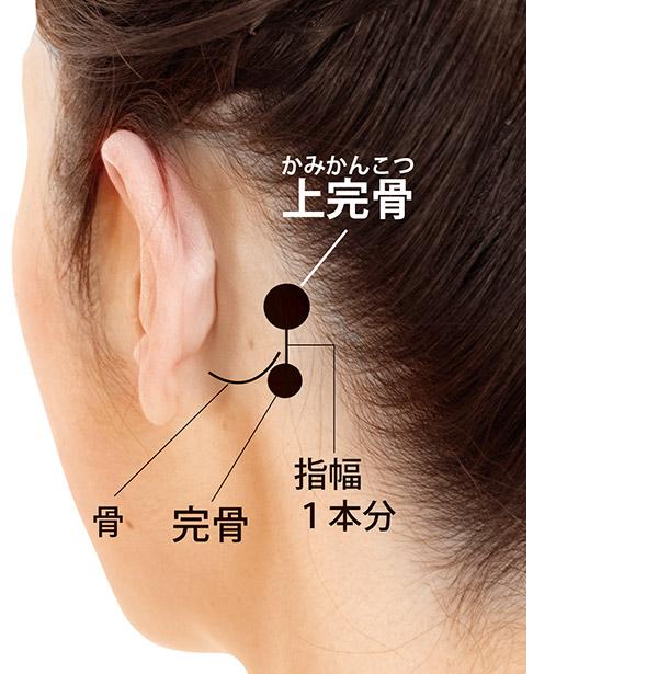 画像: 耳の後ろにある骨の出っ張りの後ろの下端近くに、完骨というツボがある。そのツボから、上に指幅1本分行ったところ。