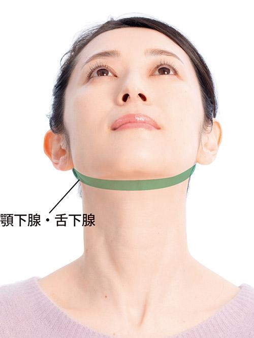 画像14: 【歯周病の予防】プラーク(歯垢)をしっかり落とす歯ブラシの選び方と歯磨き法を専門医が解説