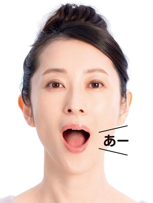 画像5: 【歯周病の予防】プラーク(歯垢)をしっかり落とす歯ブラシの選び方と歯磨き法を専門医が解説
