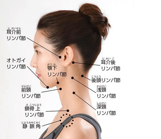 画像: 首から上の主なリンパ節