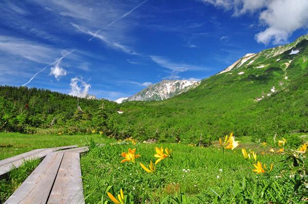 画像: ① 中部山岳国立公園 栂池自然園(長野県小谷村)